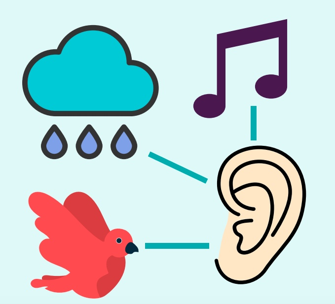 An ear next to a bird, a rain cloud, and a music note.
